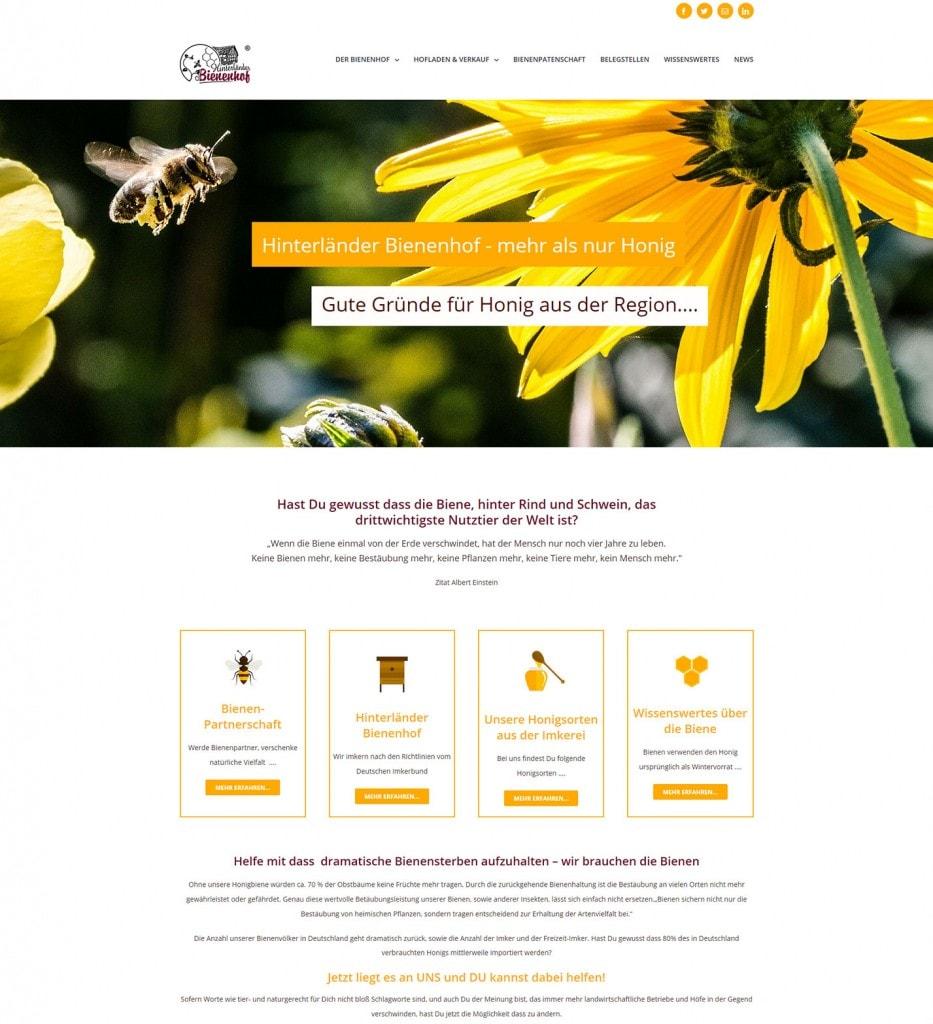 Mehr als nur Honig - Hinterländer Bienenhonig